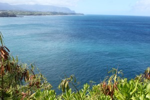 View from Kilauea Point